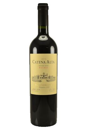 Picture of 2013 Catena Alta