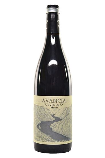 Picture of 2015 Avancia