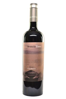 Picture of 2011 Avancia