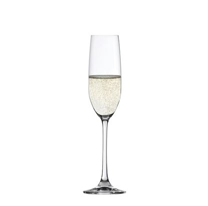 Picture of Salute Champagne Flute
